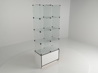 Витрина стеклянная (8 ячеек) 850*450*2140 бел/черн